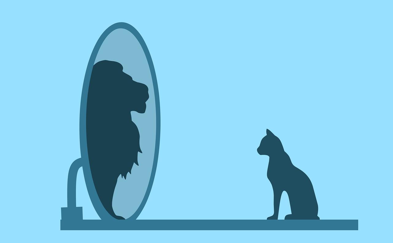 Macska nézni magát tükörben, oroszlán a képe